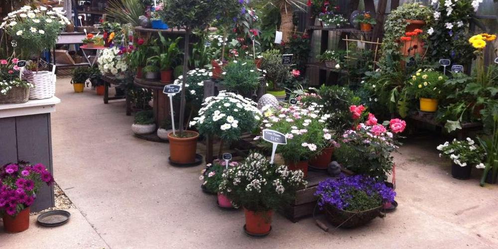 Ventes articles jardin et décoration extérieur dans la Gironde (33 ...